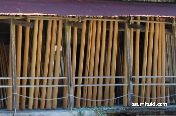 床柱(とこばしら)などに使われる高級木材「北山杉」