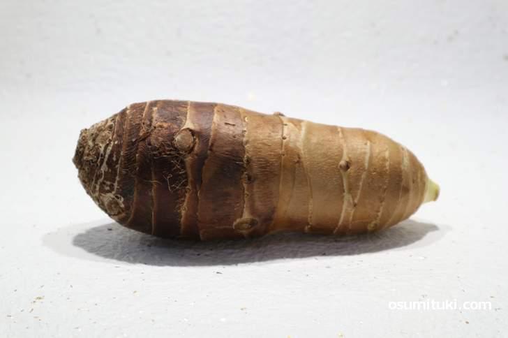京芋(たけのこ芋)