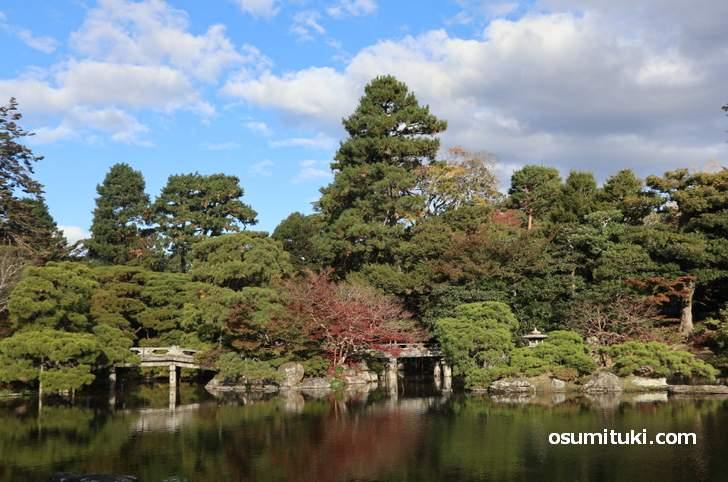 京都御所の紅葉、本来なら紅葉名所なのですが・・・・(2018年11月15日撮影)