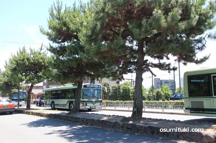 観光シーズンは金閣寺前でも市バス・観光バス・タクシーが列を作ります
