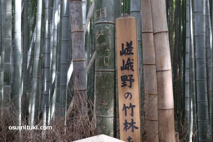 2018年の秋に報じられた嵐山「竹林の小径」での竹への落書き