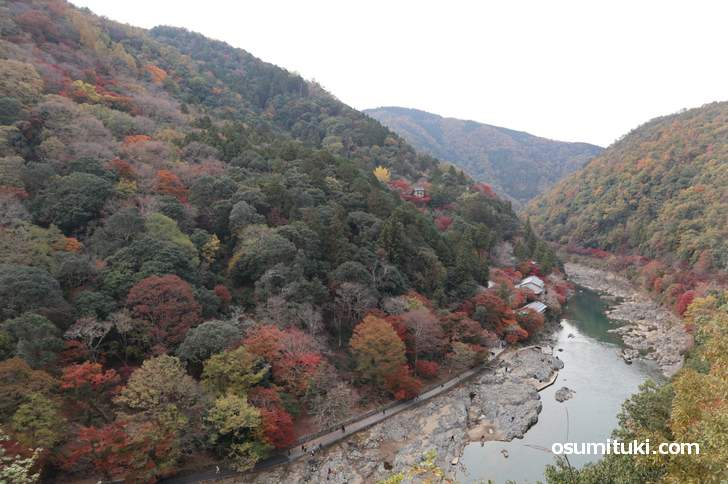 嵐山公園亀山地区の展望台から見た紅葉(2018年11月25日)