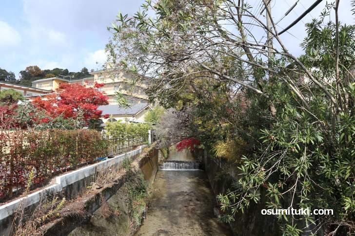 京都の別荘地でもあった銀閣寺エリアは落ち着いた雰囲気の町並みです(丸太町通の白川)