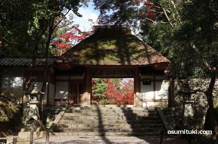 無料で入れる法然院(ほうねんいん)この先に幻想的な紅葉がありました
