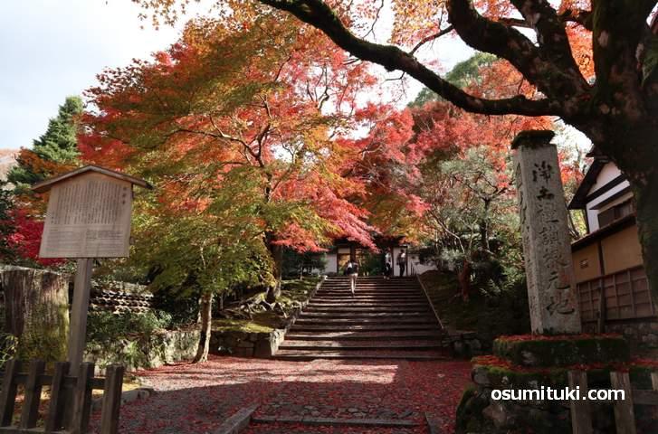 まだまだ紅葉が見頃の銀閣寺エリア(写真は安楽寺)
