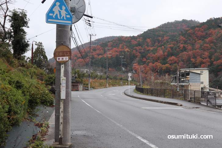 京都バス55系統「静原口バス停」