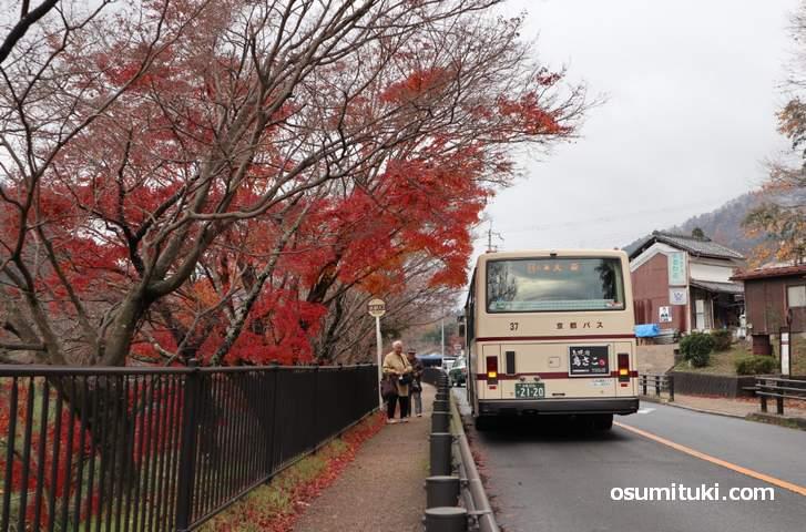 京都バス55系統「梅の宮前バス停」