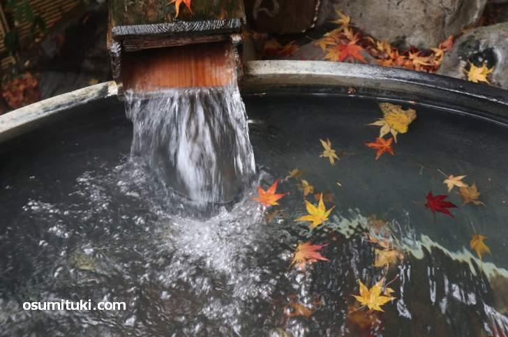 とても気持ちの良い温泉です(大原の湯)