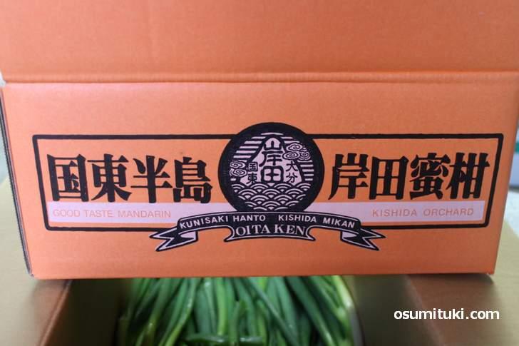 オレンジの箱に「国東半島」と書かれているのが特徴です(国東半島 岸田蜜柑)