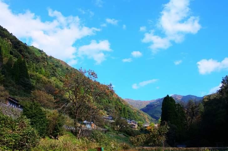 秋の九州産地、こんな田舎なのに西米良村では年間3万人の集客ビジネスがある