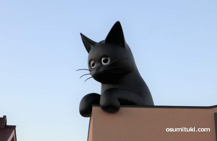 屋根の上にはトレードマークの黒猫がいます(シャノワール 松井山手店)
