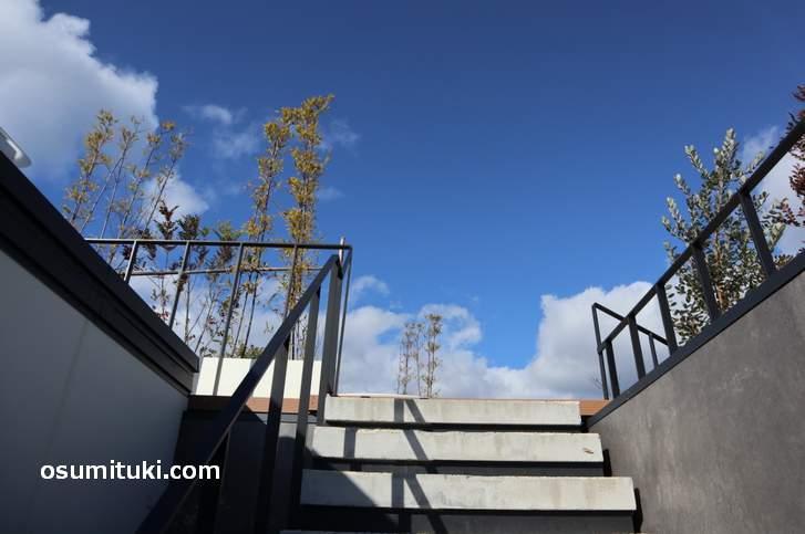 その階段は絶景のスカイテラスへと通じていた(嵐山テラスカフェ)
