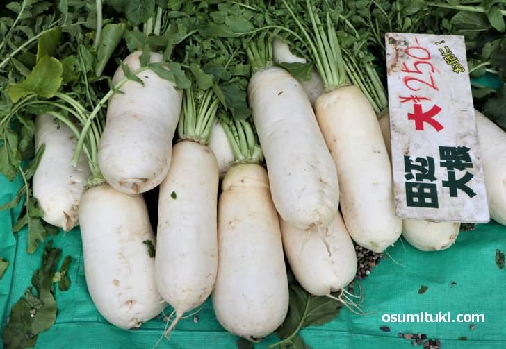 大阪伝統野菜「田辺大根」なかなか入手機会がない逸品でした