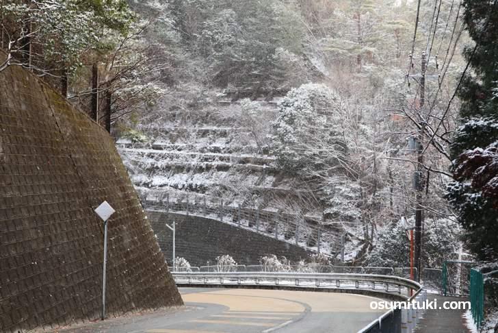 金閣寺の北側山間部で撮影した京都の雪(2018年12月29日 朝9時)