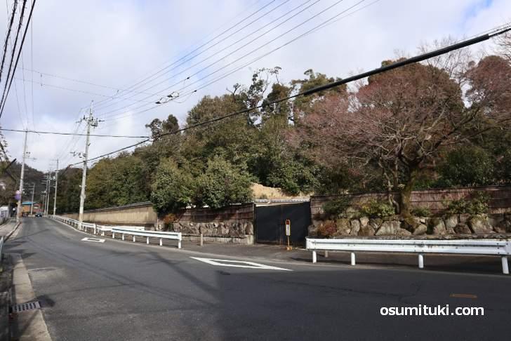 金閣寺の周辺は木々で覆われて見えないようになっています