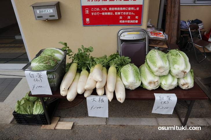 京都の「当尾野菜(とうのやさい)」大きいけど安い野菜がたくさん!