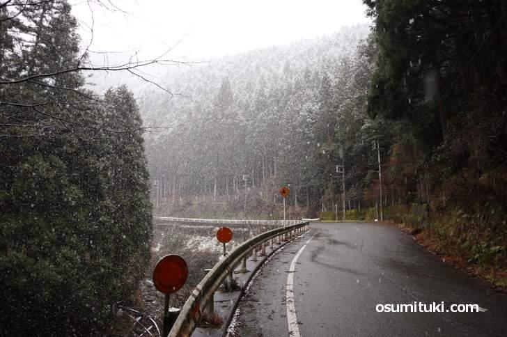 上賀茂十三石山の雪景色(2019年1月9日10時30分)