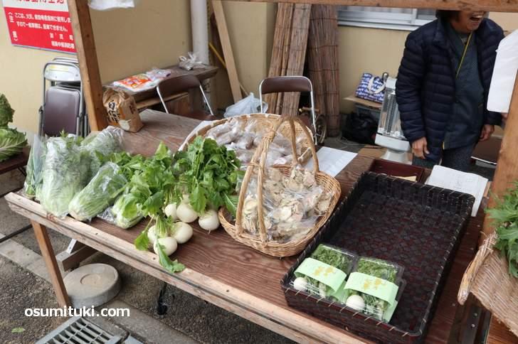 当尾野菜、冬なので根菜が多めでした