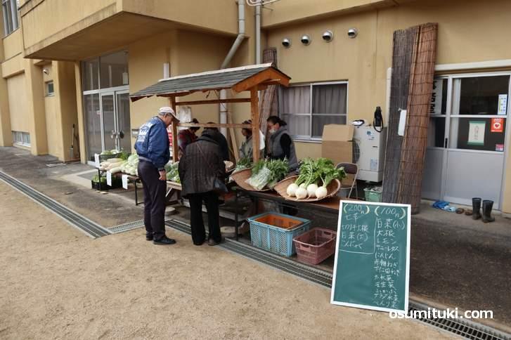当尾野菜が100円~200円で販売されていました(安いです)