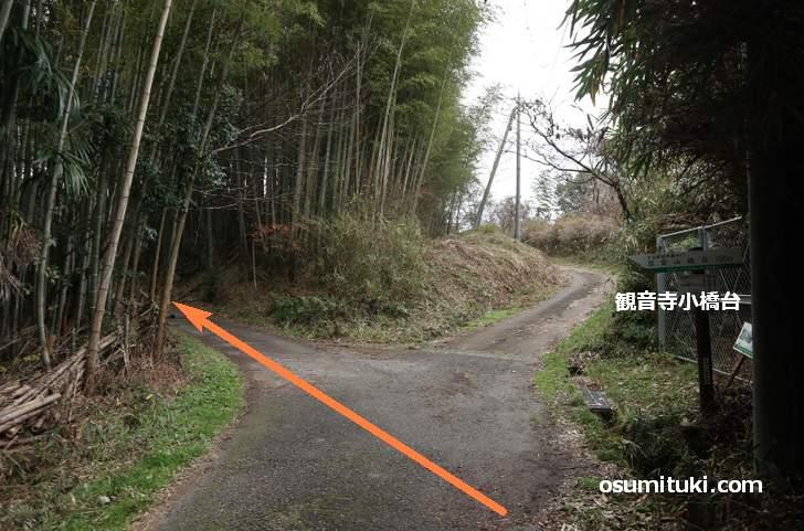 観音寺小橋台からは左の竹林を通ります
