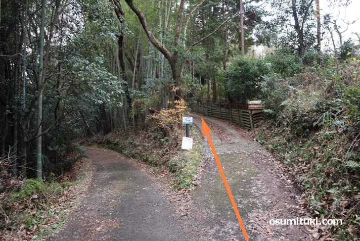 竹林の道の途中で右へ向かいます