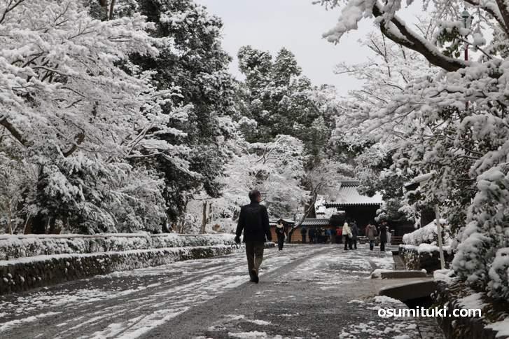 金閣寺境内は積雪5cmほど(2019年1月27日7時50分撮影)