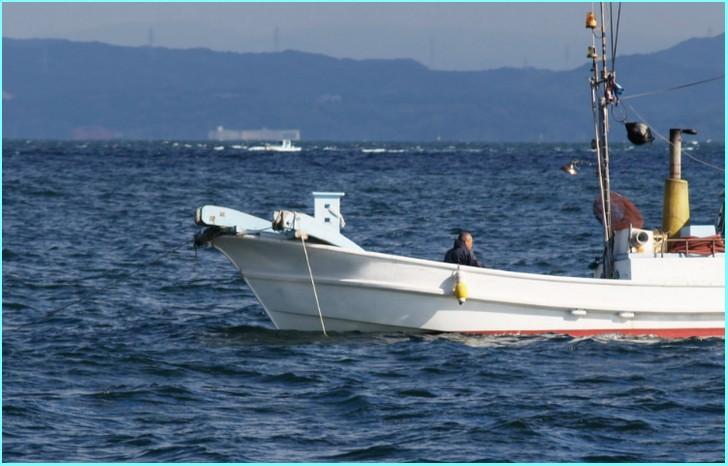 ハイカラ漁は主に外房の沖合で11月~1月にかけて行われている漁法
