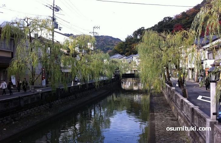 城崎温泉の大谿川の柳並木と太鼓橋