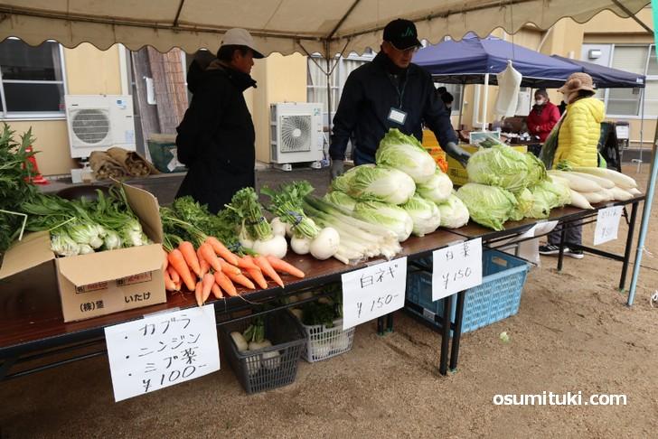当尾は土・水・空気がキレイなので、大きくみずみずしい野菜が育ちます