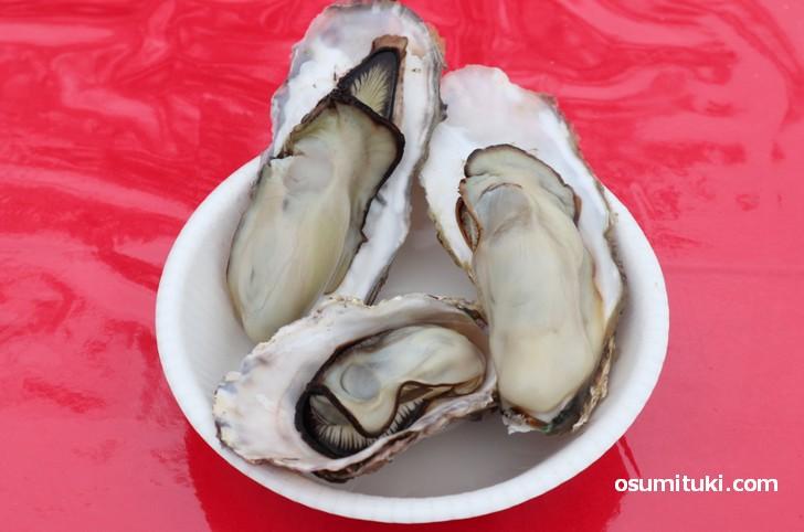 伊勢志摩「山藤(やまとう)」さんの南伊勢牡蠣は3個で500円です
