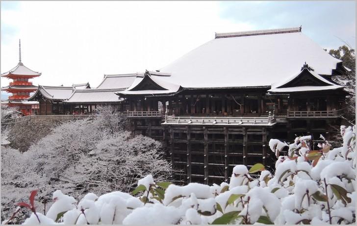 冬の京都で木村拓哉さんが食べた京都の食材とは?