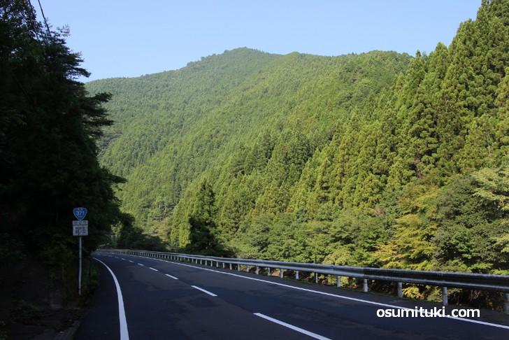 国道371号、山間部を走る道が永遠と続きます(龍神村湯ノ又で撮影)
