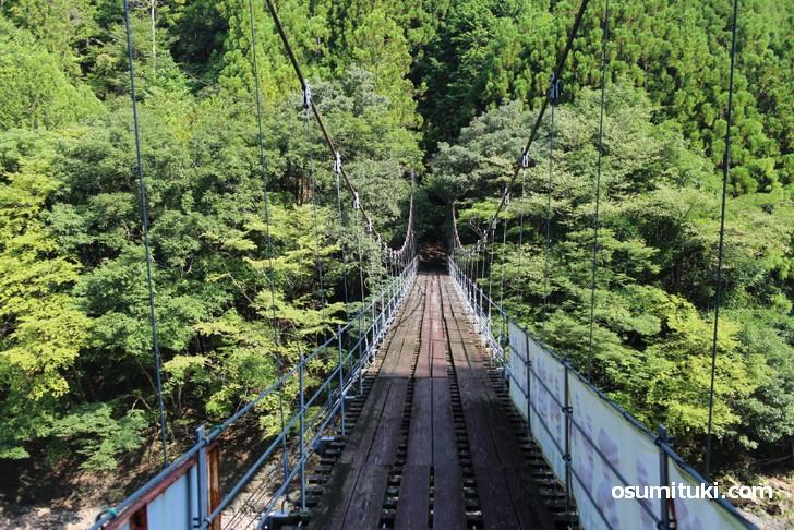 龍神村では集落は道沿いにあるとは限りません(吊橋で行く場所が多いです)