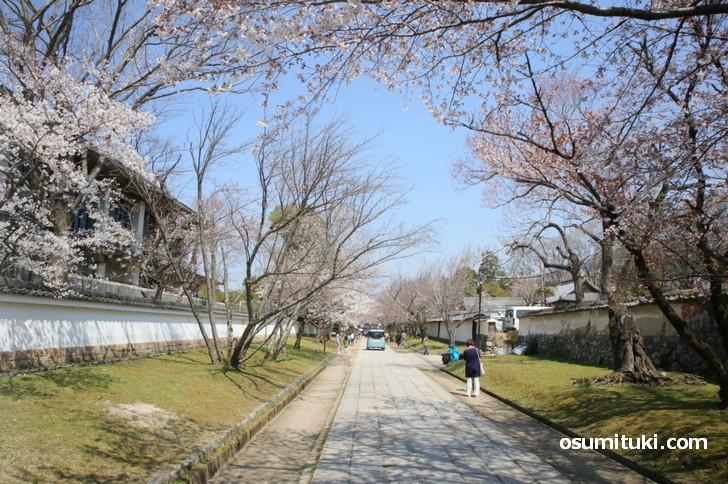 醍醐寺 への行くには醍醐駅から徒歩がお薦め