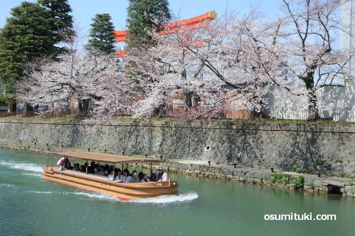 「和とcurry しらべ」は京都の一大観光地「岡崎エリア」にあるカレー店です