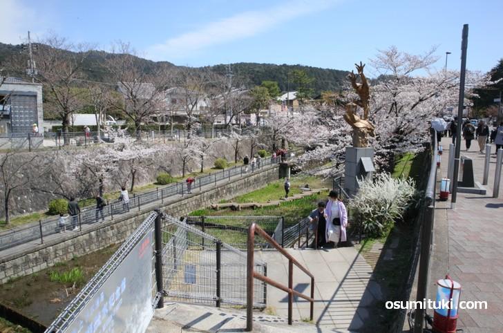 琵琶湖疏水記念館から蹴上インクラインへ向かう階段