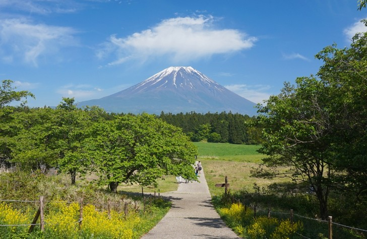 ハーブ&ジャム工房 松本があるのは富士山を仰ぐ富士宮市