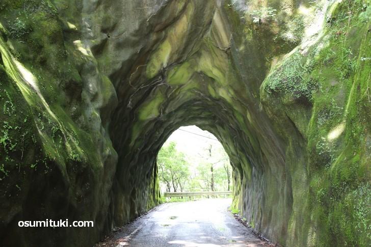 壁がモコモコしたトンネル(和歌山県)