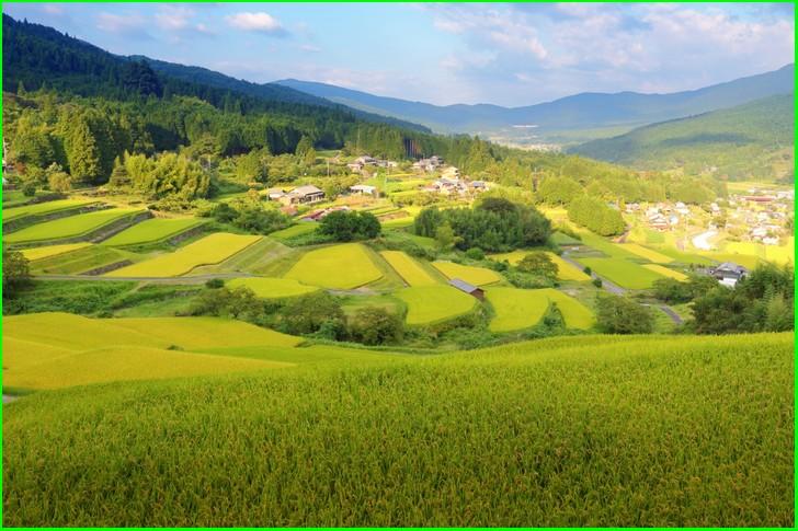 坂折棚田(岐阜県恵那市)の水源を守る木こりの宿が『人生の楽園』で紹介