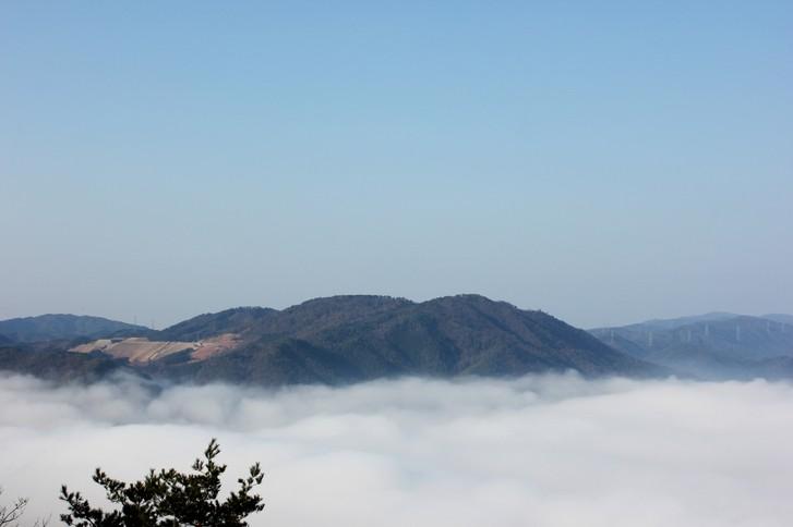 実は亀岡市は霧が多く「雲海」が見られる町なんです