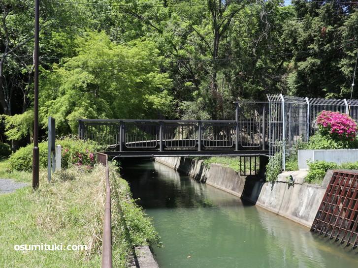 橋です、これがなにか?