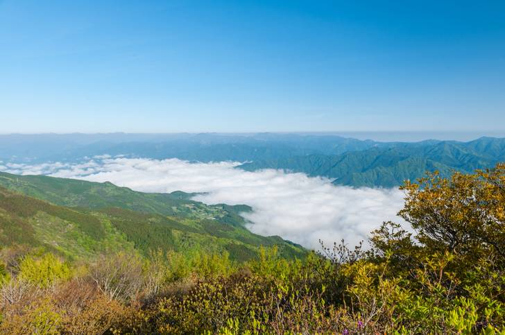 梶ヶ森の山頂から見た高知県大豊町