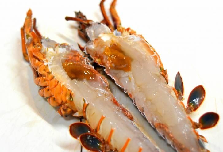 長崎県五島列島の福江島、伝統漁法・タコ脅し漁で捕れた伊勢海老が青空レストランで紹介