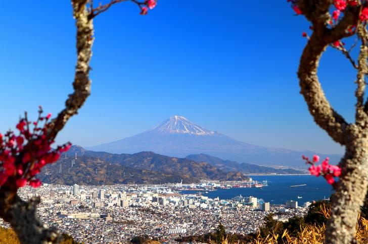 有名な景勝地「日本平」がある静岡市清水区の農家民宿「ぬくもり園ゆるり」が人生の楽園で紹介