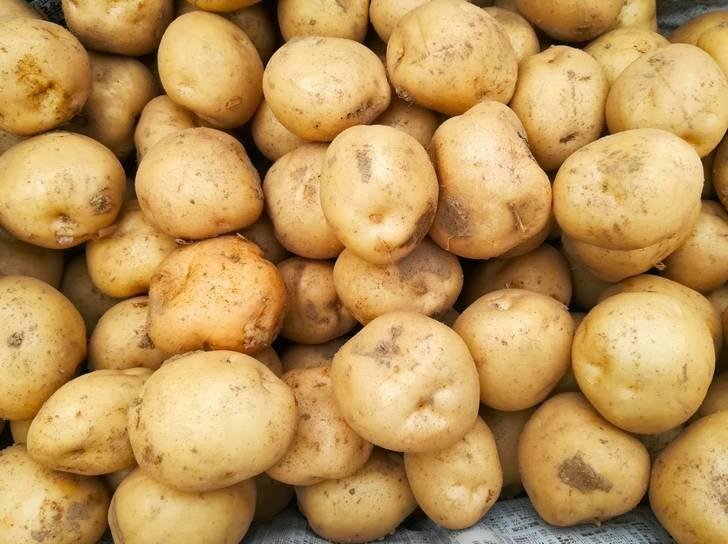 その三方原台地で生産されるジャガイモが三方原馬鈴薯(みかたはらばれいしょ)