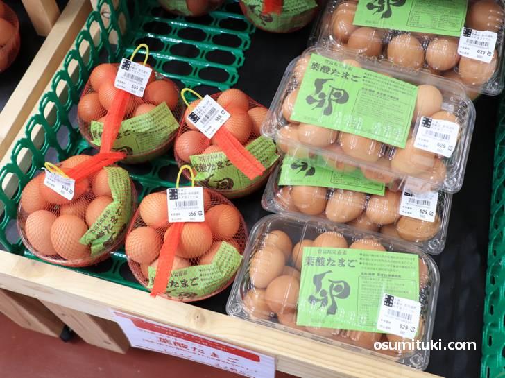 卵はほとんどが500円以上、これを基準にすると道の駅の全体の値段がだいたいわかります