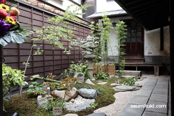 一番奥には京町家の特徴のひとつ「坪庭」があります(六角kitchen109)