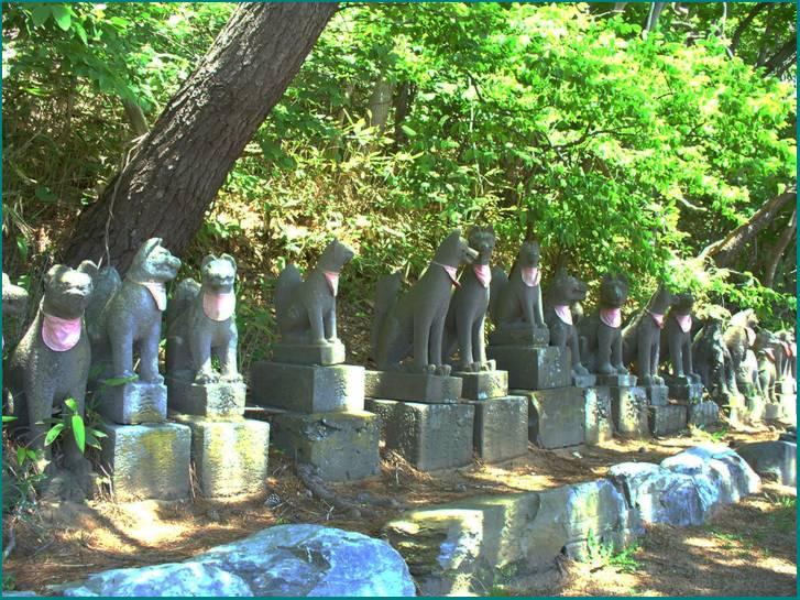 高山稲荷神社の奥には使われなくなったお稲荷さんと祠が大量に鎮座している