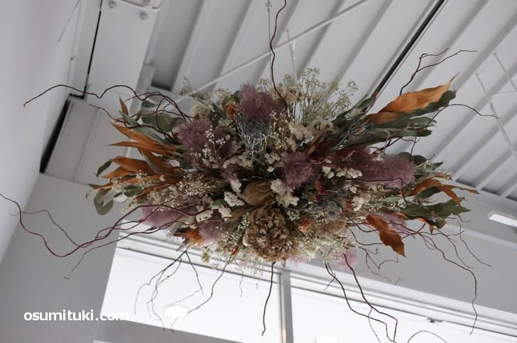 白川通にあるドライフラワーとカフェのお店の花が飾られていました
