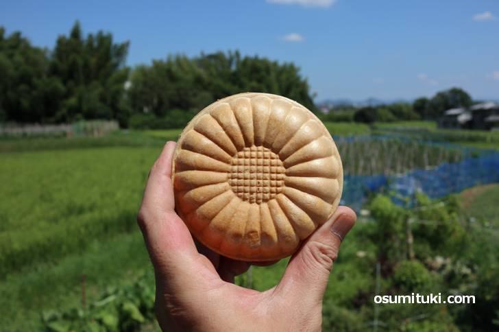 京都の田園地帯・大原野で食べた豆乳アイスモナカ